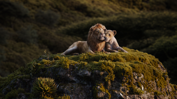 Lionking2019-animationscreencaps.com-9579