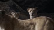 Lionking2019-animationscreencaps.com-7230