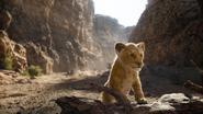 Lionking2019-animationscreencaps.com-5158