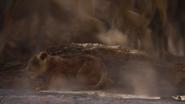 Lionking2019-animationscreencaps.com-4678