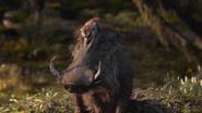 Lionking2019-animationscreencaps.com-9636