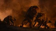 Lionking2019-animationscreencaps.com-11967