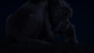 Lionking2019-animationscreencaps.com-3715
