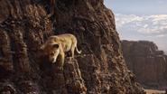 Lionking2019-animationscreencaps.com-5658