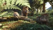Lionking2019-animationscreencaps.com-6983