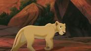 Lion-king2-disneyscreencaps.com-635