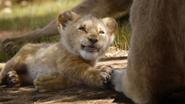 Lionking2019-animationscreencaps.com-2068