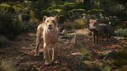 Lionking2019-animationscreencaps.com-9224