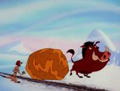 YC Timon & Pumbaa4