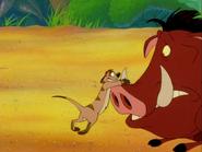 BB Timon & Pumbaa5