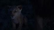 Lionking2019-animationscreencaps.com-3680