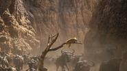 Lionking2019-animationscreencaps.com-4761