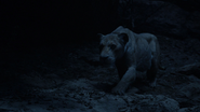 Lionking2019-animationscreencaps.com-7594