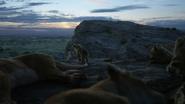 Lionking2019-animationscreencaps.com-1258
