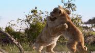 Lionking2019-animationscreencaps.com-2730