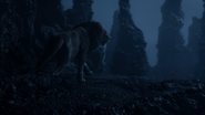 Lionking2019-animationscreencaps.com-4238