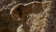 Lionking2019-animationscreencaps.com-4835