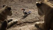 Lionking2019-animationscreencaps.com-7151