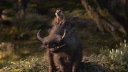 Lionking2019-animationscreencaps.com-9625