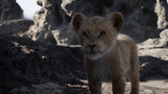 Lionking2019-animationscreencaps.com-2971