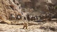Lionking2019-animationscreencaps.com-4622