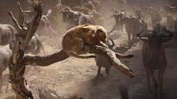 Lionking2019-animationscreencaps.com-4738