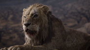 Lionking2019-animationscreencaps.com-7406