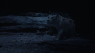 Lionking2019-animationscreencaps.com-7574