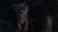 Lionking2019-animationscreencaps.com-3633