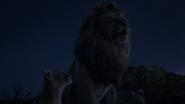 Lionking2019-animationscreencaps.com-3675