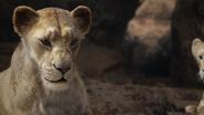 Lionking2019-animationscreencaps.com-7164