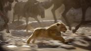 Lionking2019-animationscreencaps.com-4717