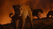 Lionking2019-animationscreencaps.com-11787