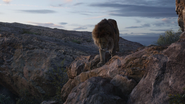 Lionking2019-animationscreencaps.com-1282