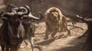 Lionking2019-animationscreencaps.com-4915