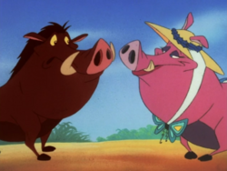 MAY Pumbaa & Rosebud