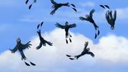 BirdofaThousandVoices