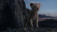 Lionking2019-animationscreencaps.com-1190