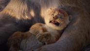 Lionking2019-animationscreencaps.com-324