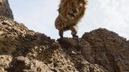 Lionking2019-animationscreencaps.com-4802