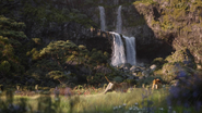 Lionking2019-animationscreencaps.com-9384
