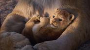 Lionking2019-animationscreencaps.com-312