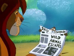SYD Timon & Simba9