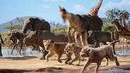Lionking2019-animationscreencaps.com-2624