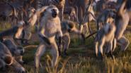 Lionking2019-animationscreencaps.com-385