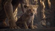Lionking2019-animationscreencaps.com-5402