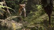 Lionking2019-animationscreencaps.com-9022