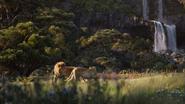 Lionking2019-animationscreencaps.com-9375