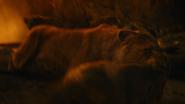 Lionking2019-animationscreencaps.com-11663