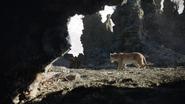 Lionking2019-animationscreencaps.com-2899
